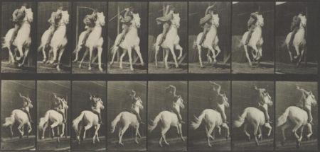 Eadweard Muybridge-Pl. 634 (Galloping Horse), From Animal Locomotion-1887