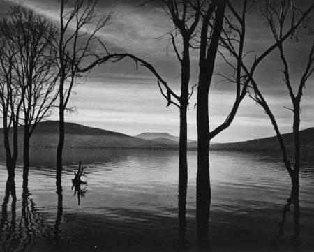 Brett Weston-Lake Patzcuaro, Mexico-1976