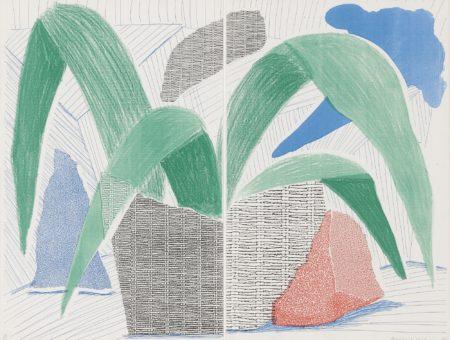 David Hockney-Green Grey & Blue Plant, July 1986 (M.C.A.T. 317)-1986
