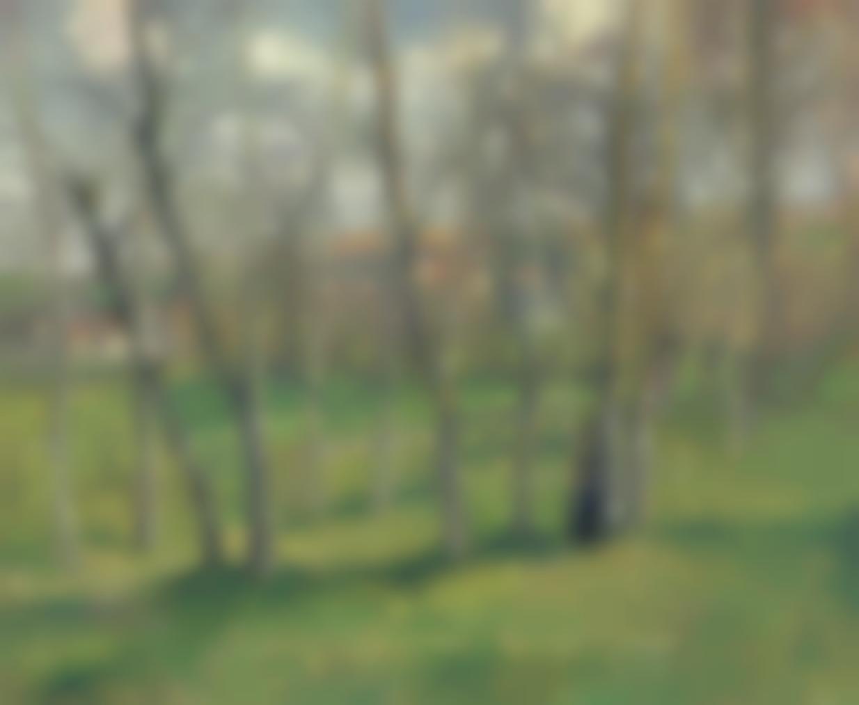 Camille Pissarro-Prairie De Bazincourt-1885