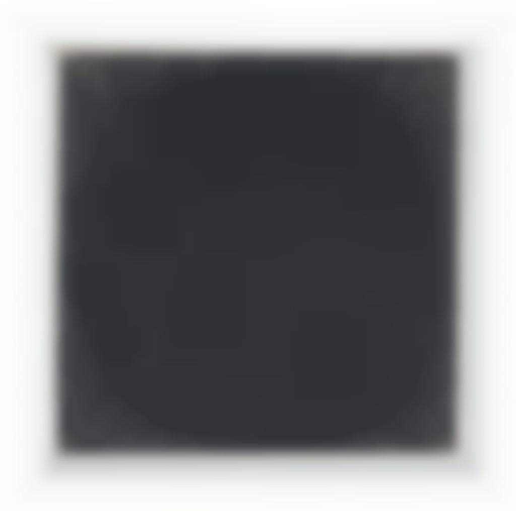 Richard Serra-Artaud-2009
