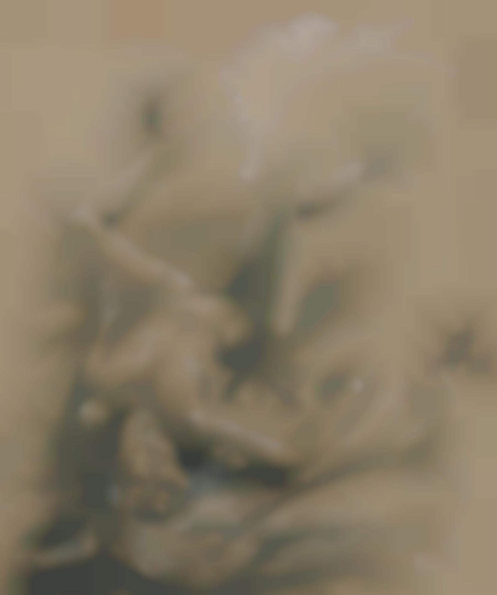 Otto Dix-Liegender Frauenakt (Reclining Female Nude)-1932