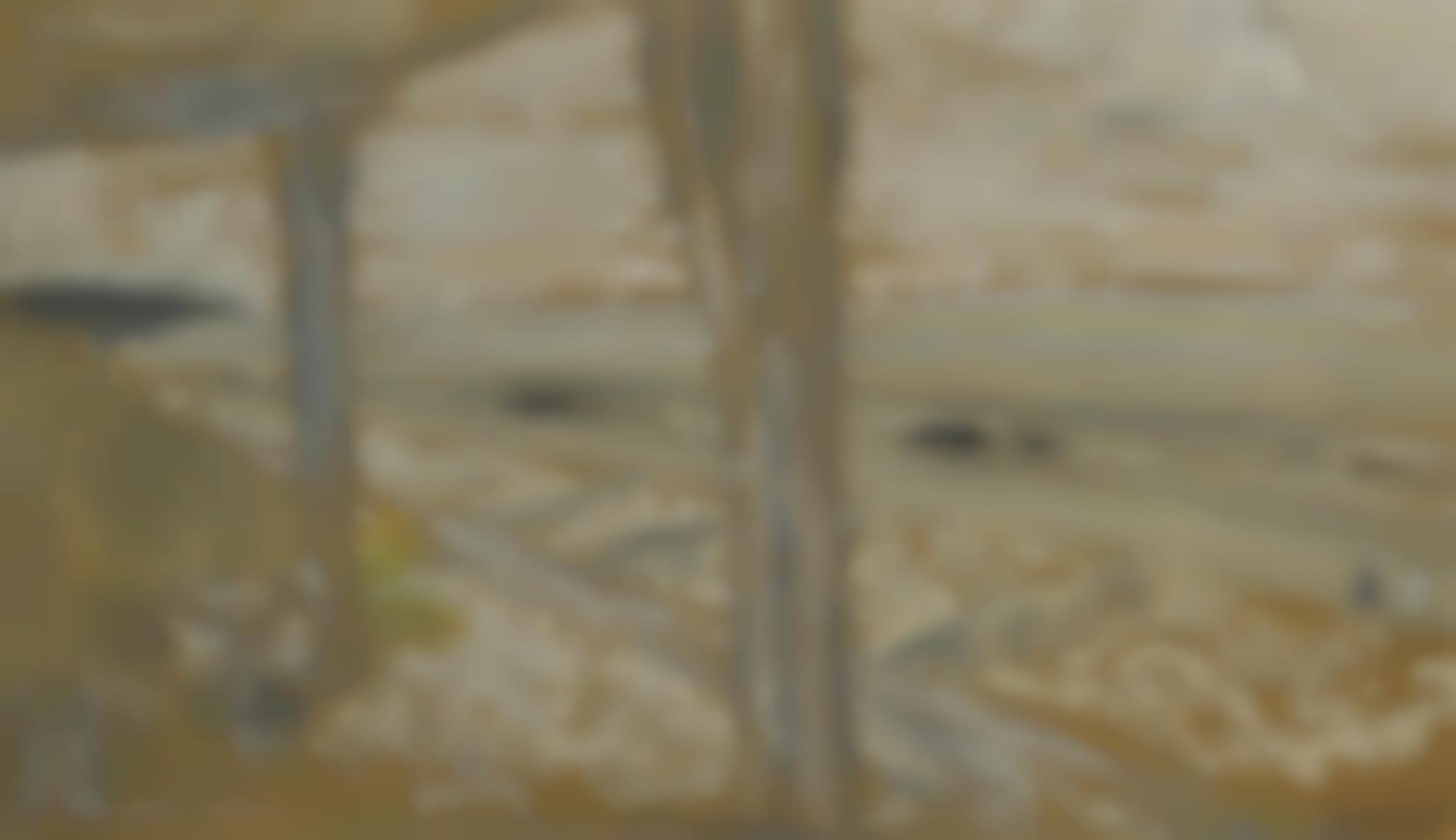 Edouard Vuillard-La Plage-1904