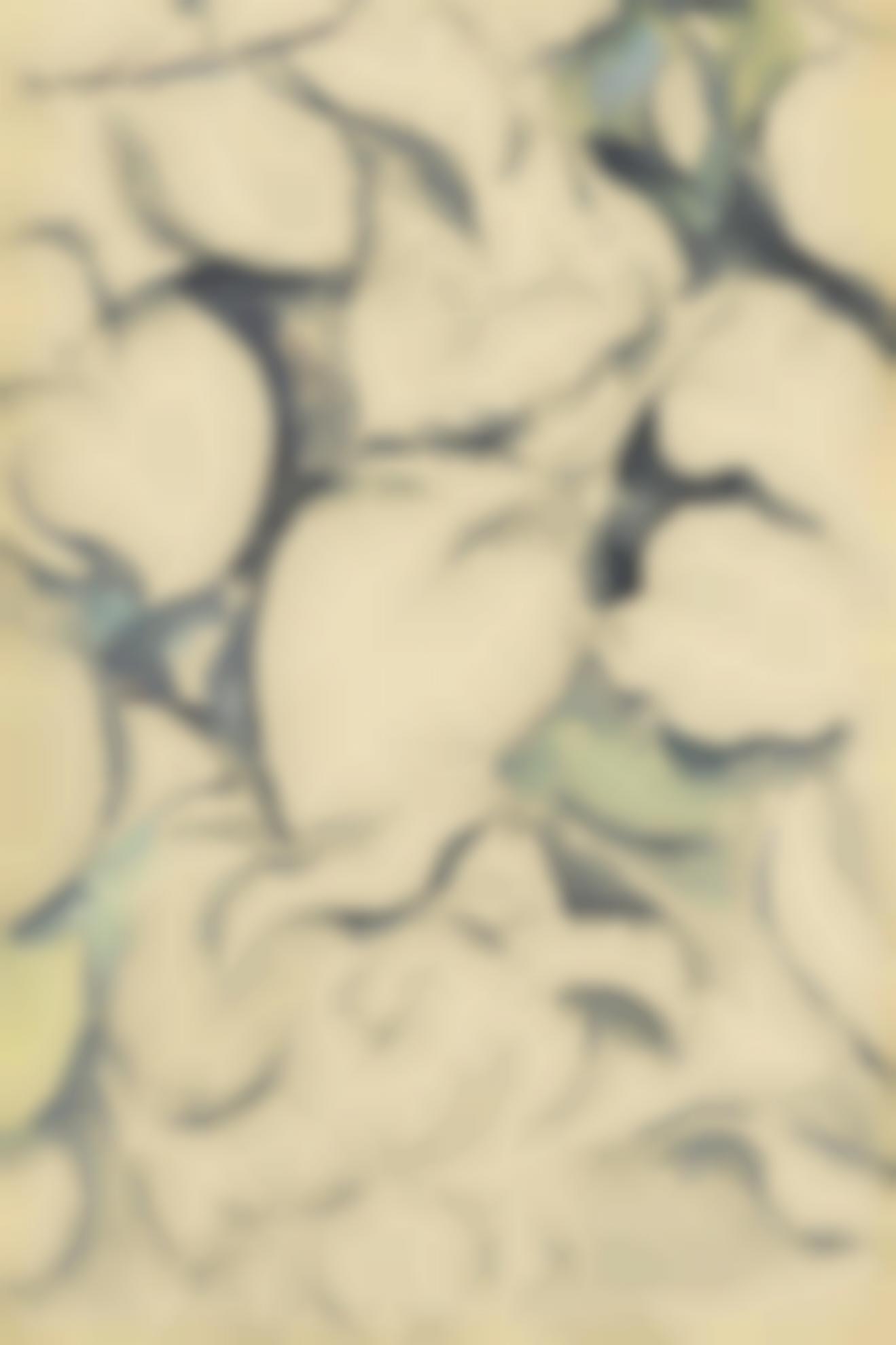 Paul Cezanne-Feuilles Et Fleurs (Recto) & Etude Apres Une Sculpture Antique: Faune Et Enfant (Verso) (A Double-Sided Drawing)-1895