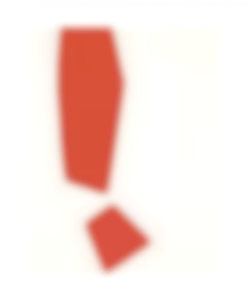 Sarah Crowner-New Red Form-2014