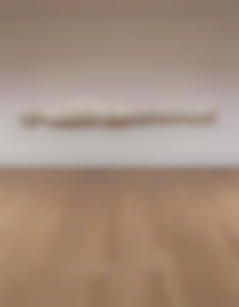 Tom Friedman-Packing Peanuts Figure-2007