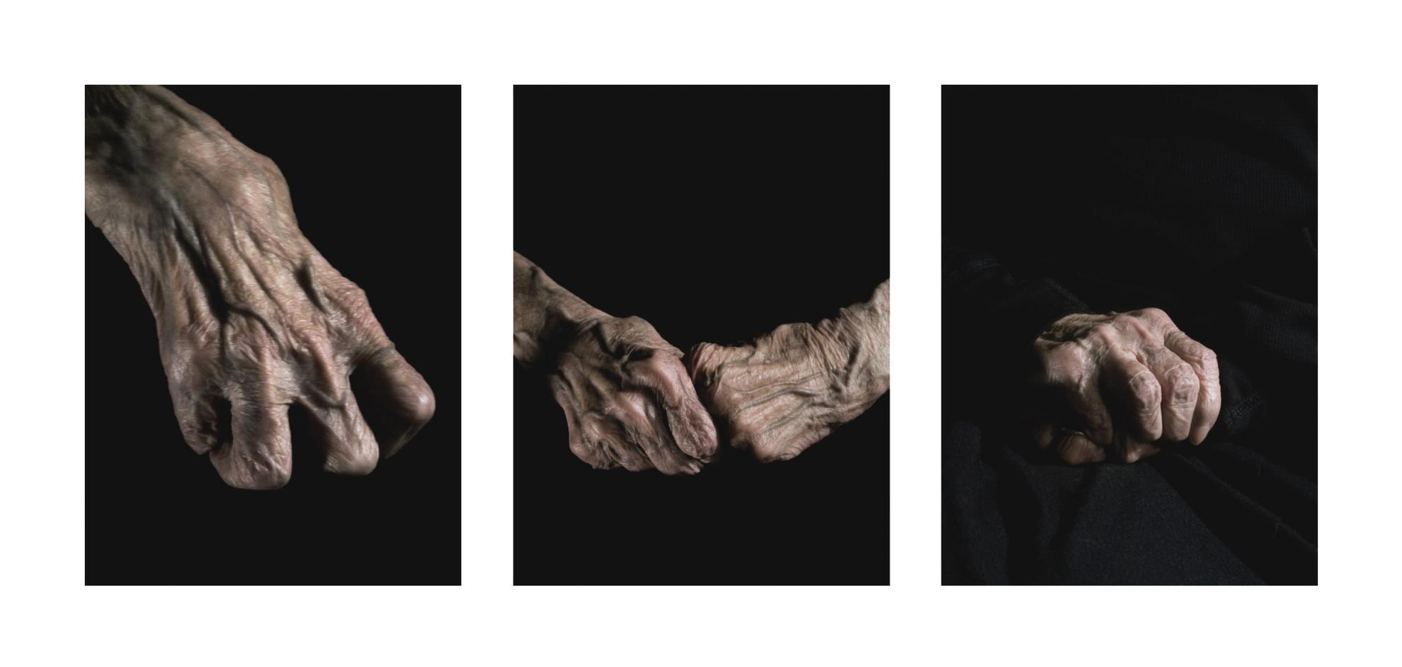 Alex Van Gelder - Armed Forces (Triptych), 2010-2010