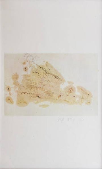 Joseph Beuys-Haase-1978