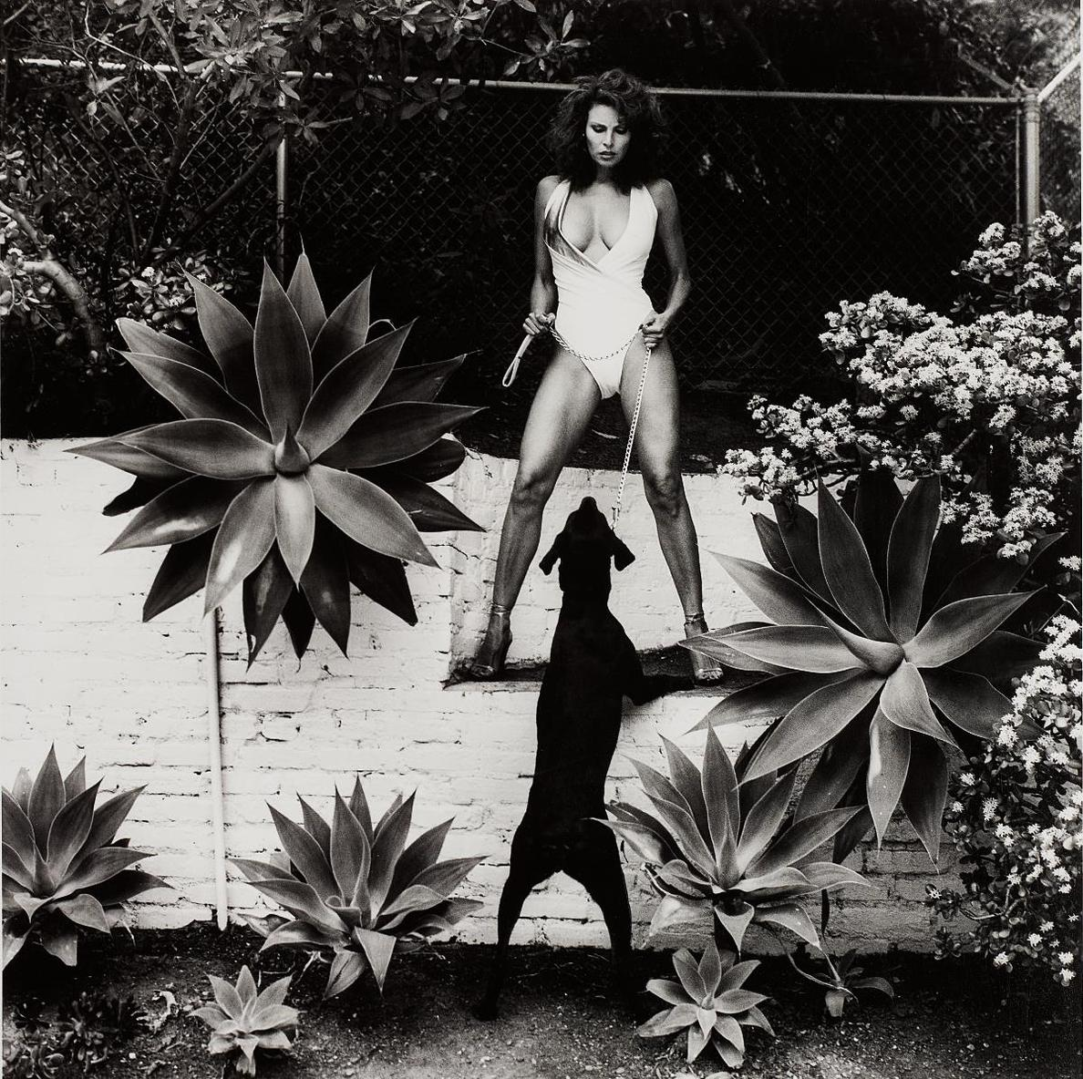 Helmut Newton-Raquel Welch In Her Backyard, Beverly Hills-1981