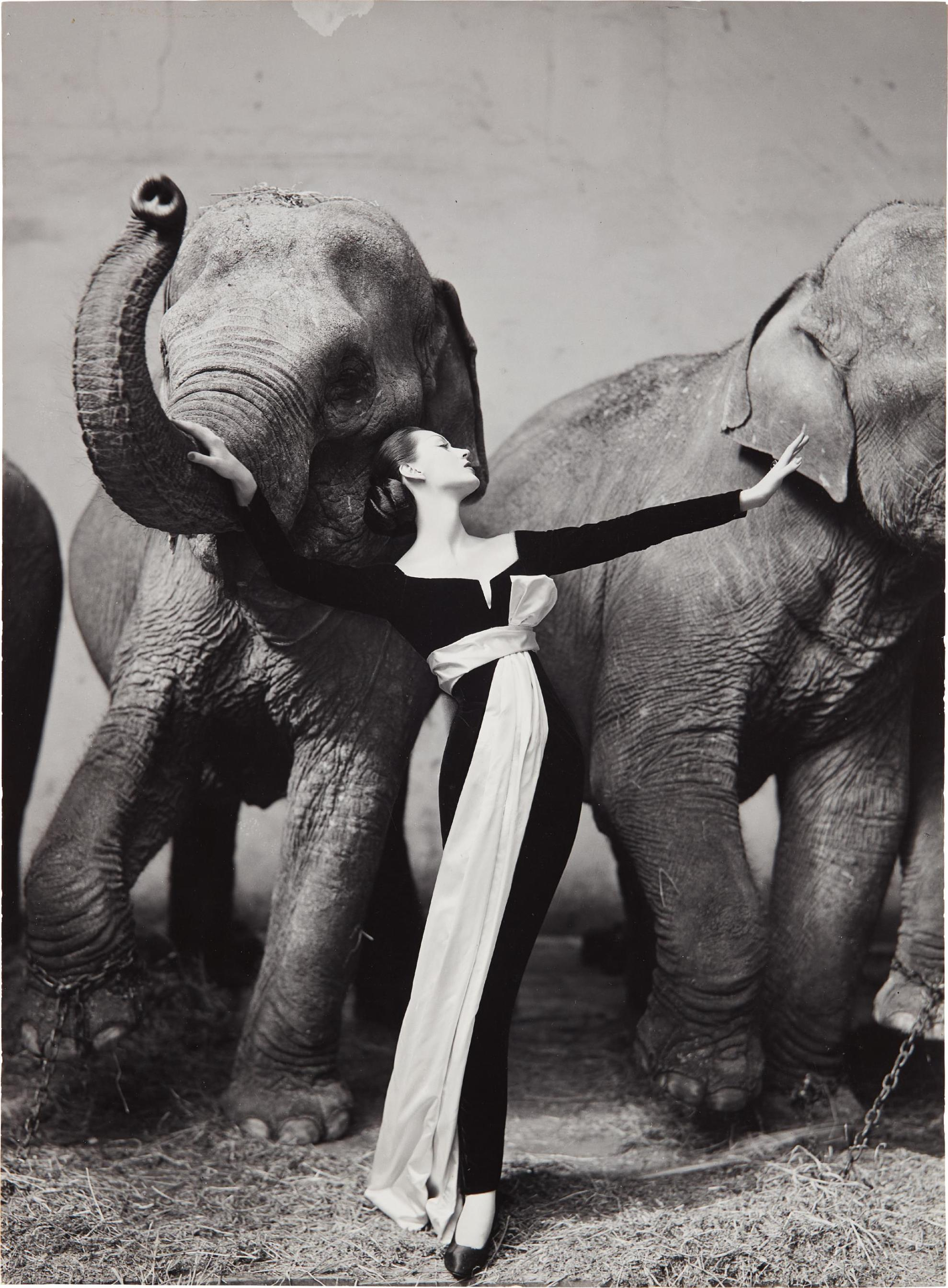 Richard Avedon-Dovima With Elephants, Evening Dress By Dior, Cirque D'Hiver, Paris, August-1955