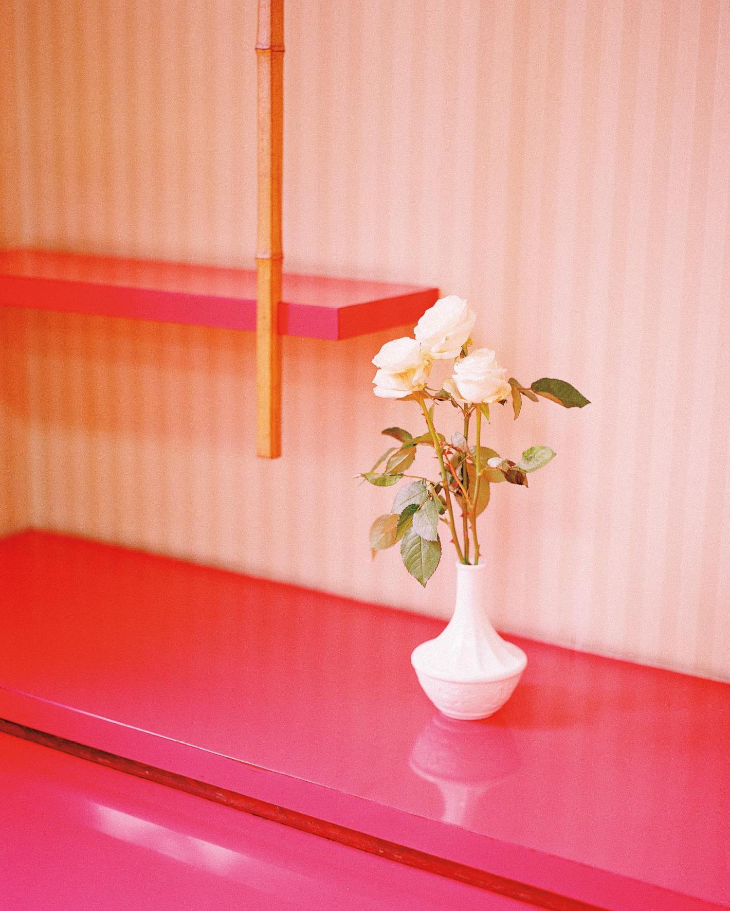 Kazuyoshi Usui-White Roses From Showa88-2011