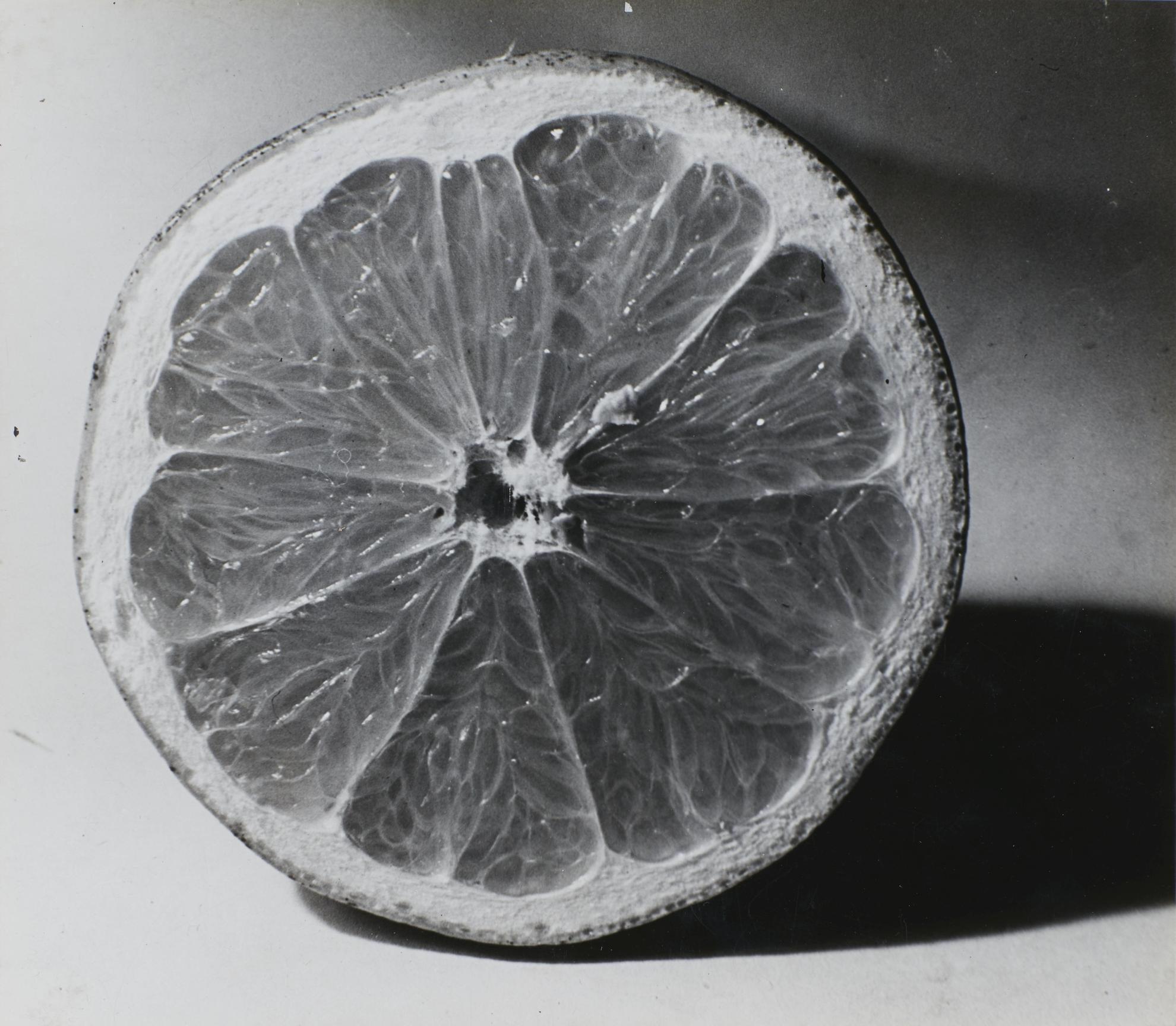 Jose Alemany - Untitled-1938