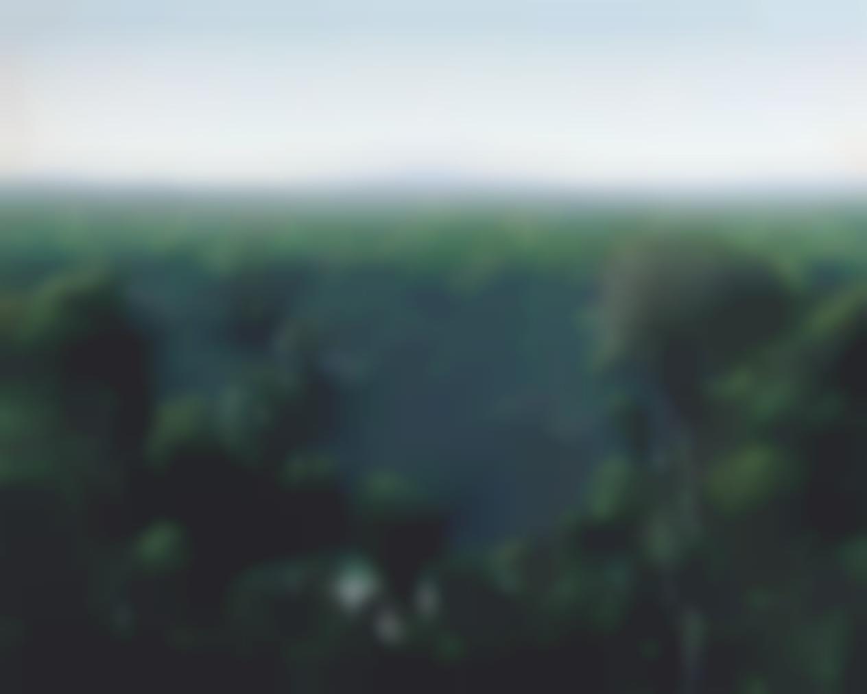 Tomas Sanchez-Aguas Ocultas En La Selva-1990