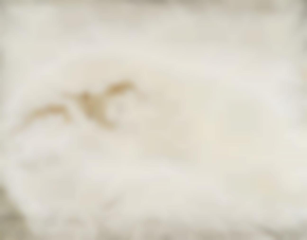 Tsuguharu Foujita-Nu Allonge (Reclining Nude)-1932
