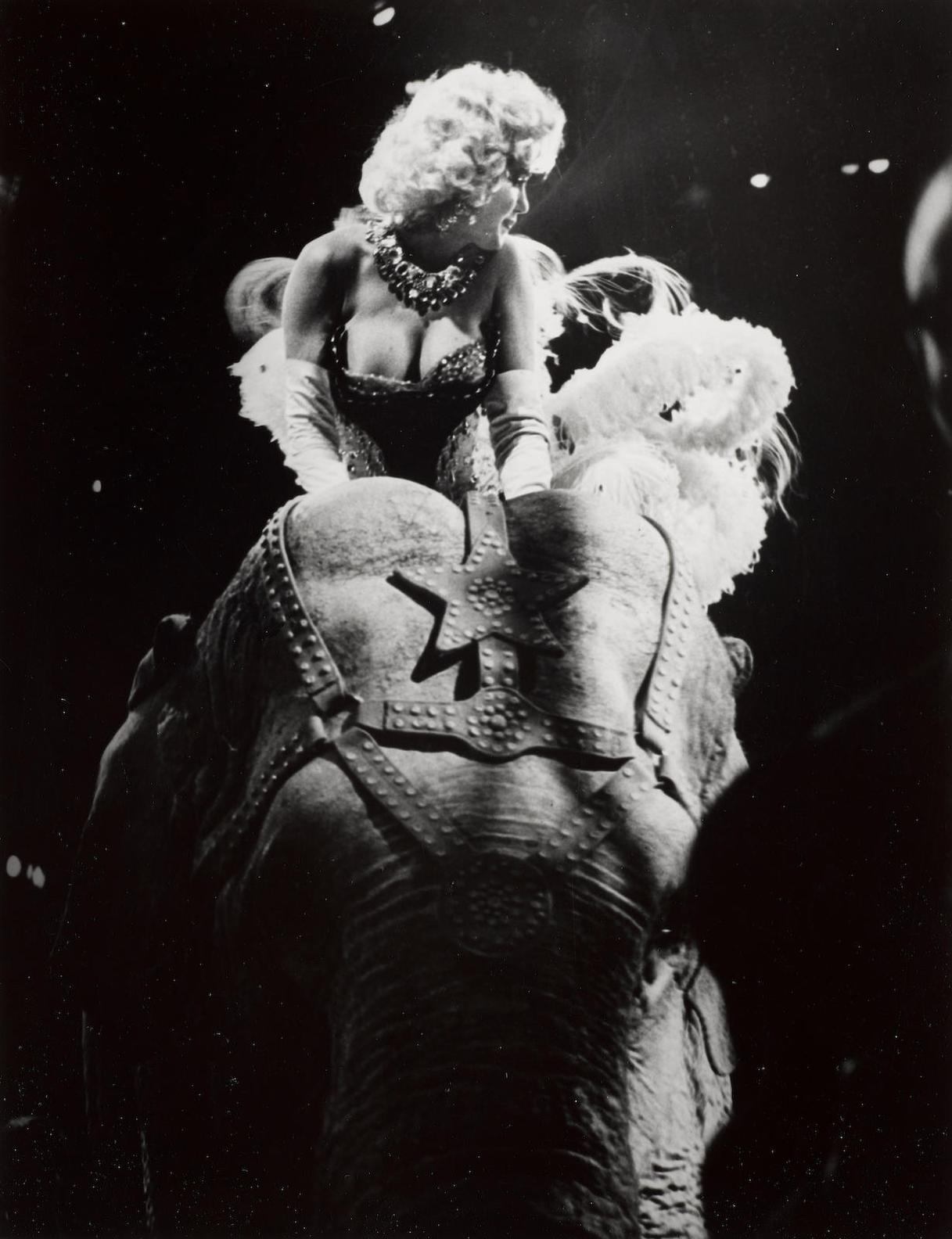 Weegee-Marilyn Riding A Pink Elephant, Opening Night Of Ringling Brothers Circus, Madison Square Garden, New York City, March 30-1955