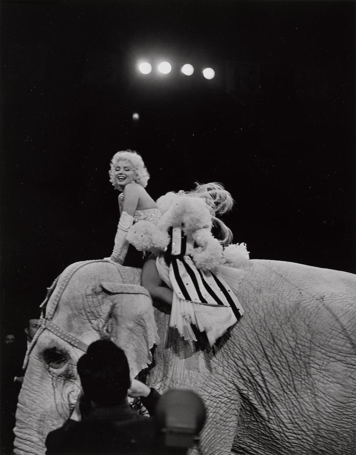 Erika Stone - Marilyn Monroe Riding A Pink Elephant At The Opening Of Ringling Brothers Circus, Madison Square Garden, New York City, March 30-1955