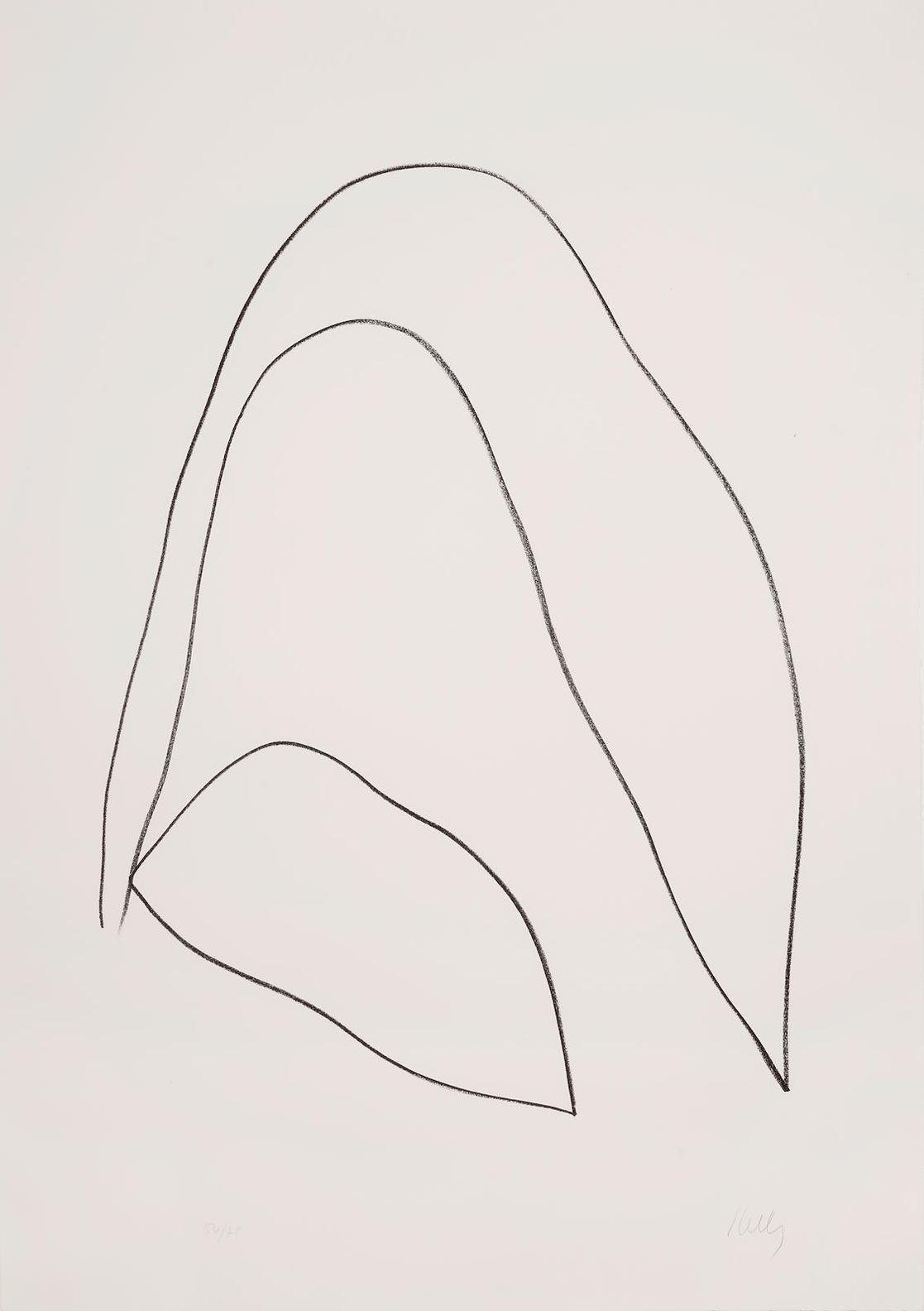 Ellsworth Kelly-Leaves (Feuilles) (A. 32)-1965