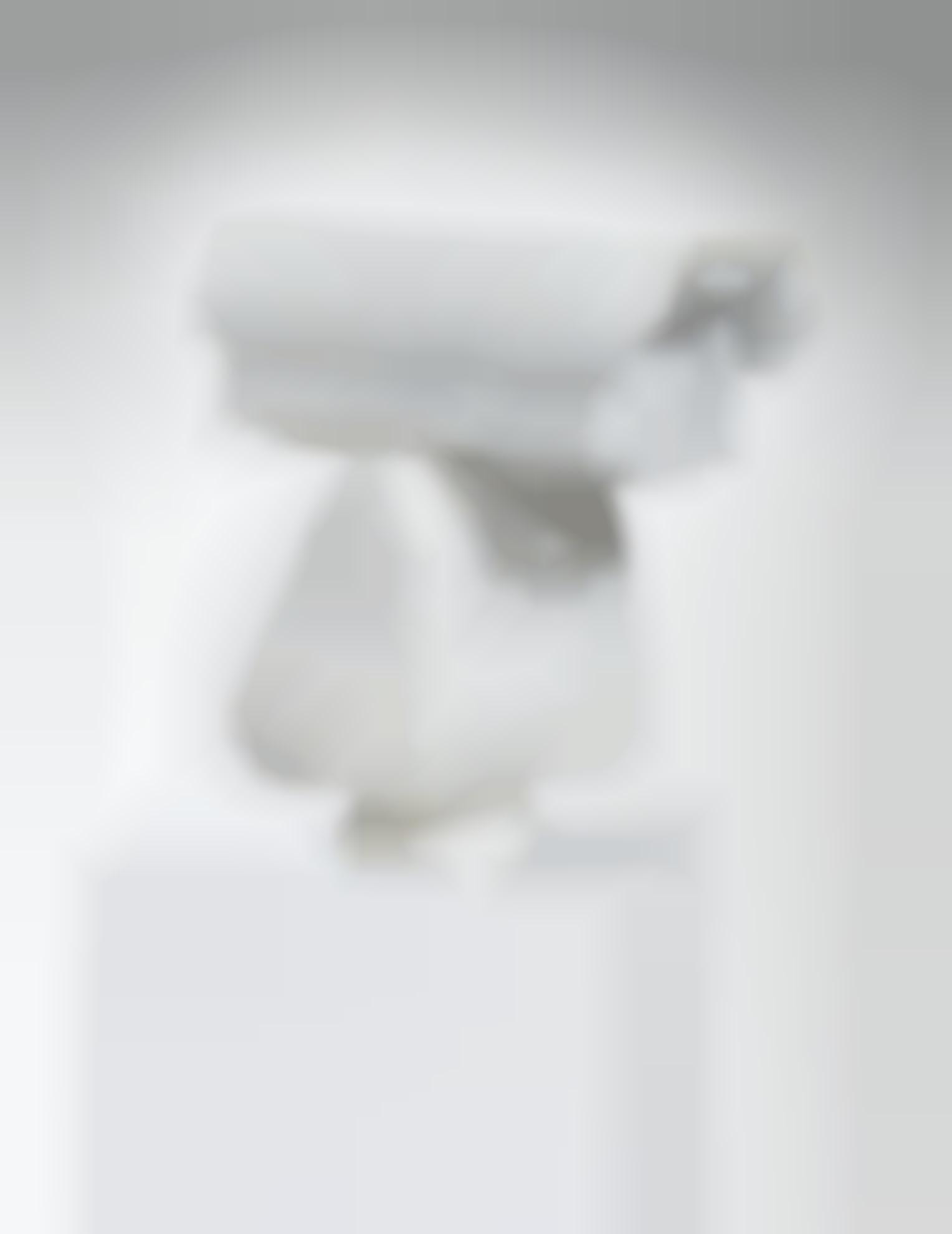 Ai Weiwei-Surveillance Camera-2010