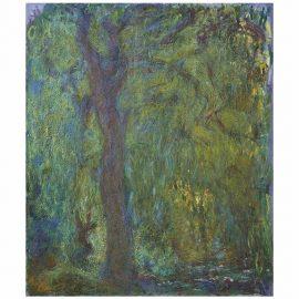 Claude Monet-Saule Pleureur-1919