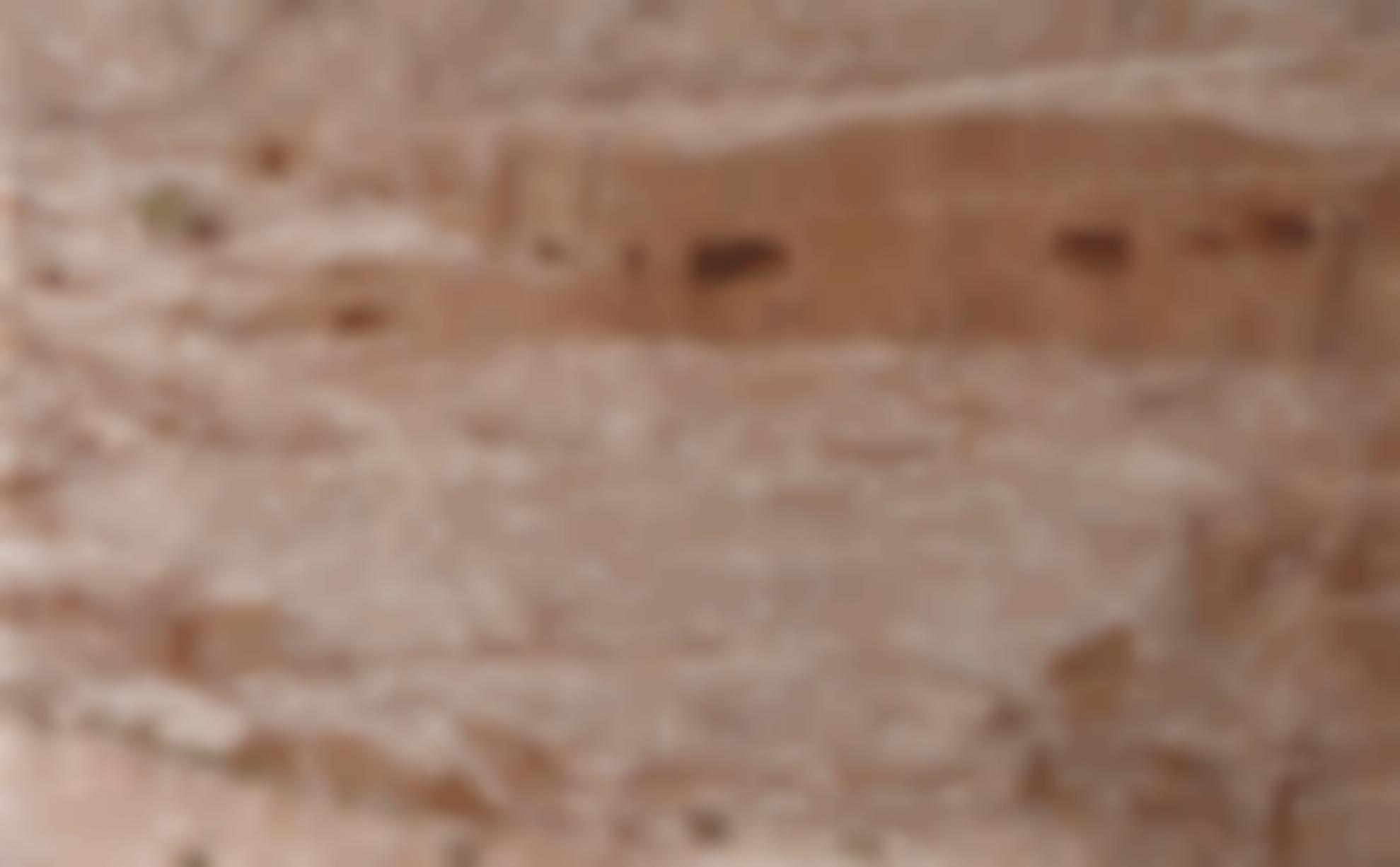 Gal Weinstein-Petra-2014