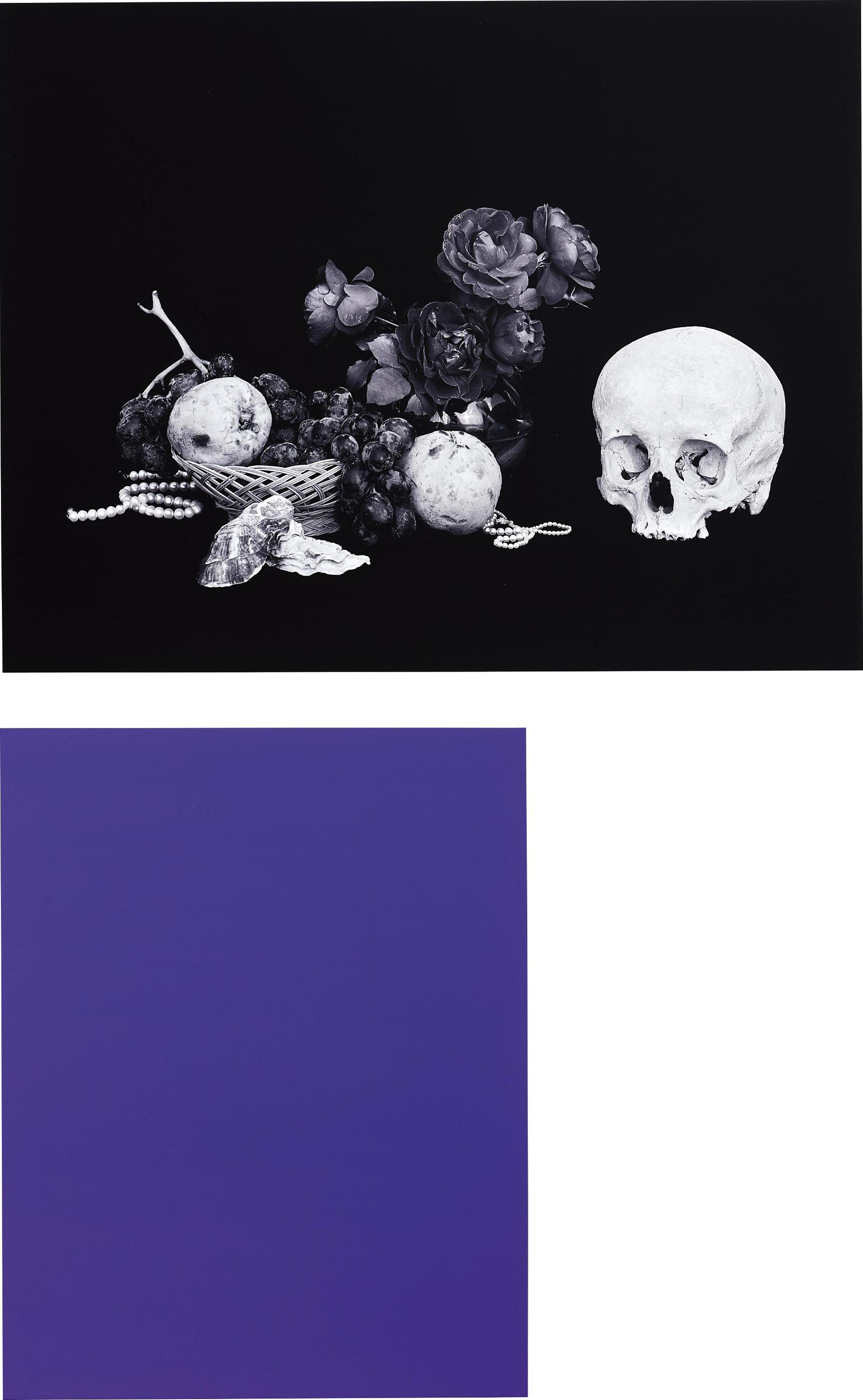Shirana Shahbazi-Two Works: (I) [Monochrome-01-2007]; (II) [Stillleben-15-2007]-2007