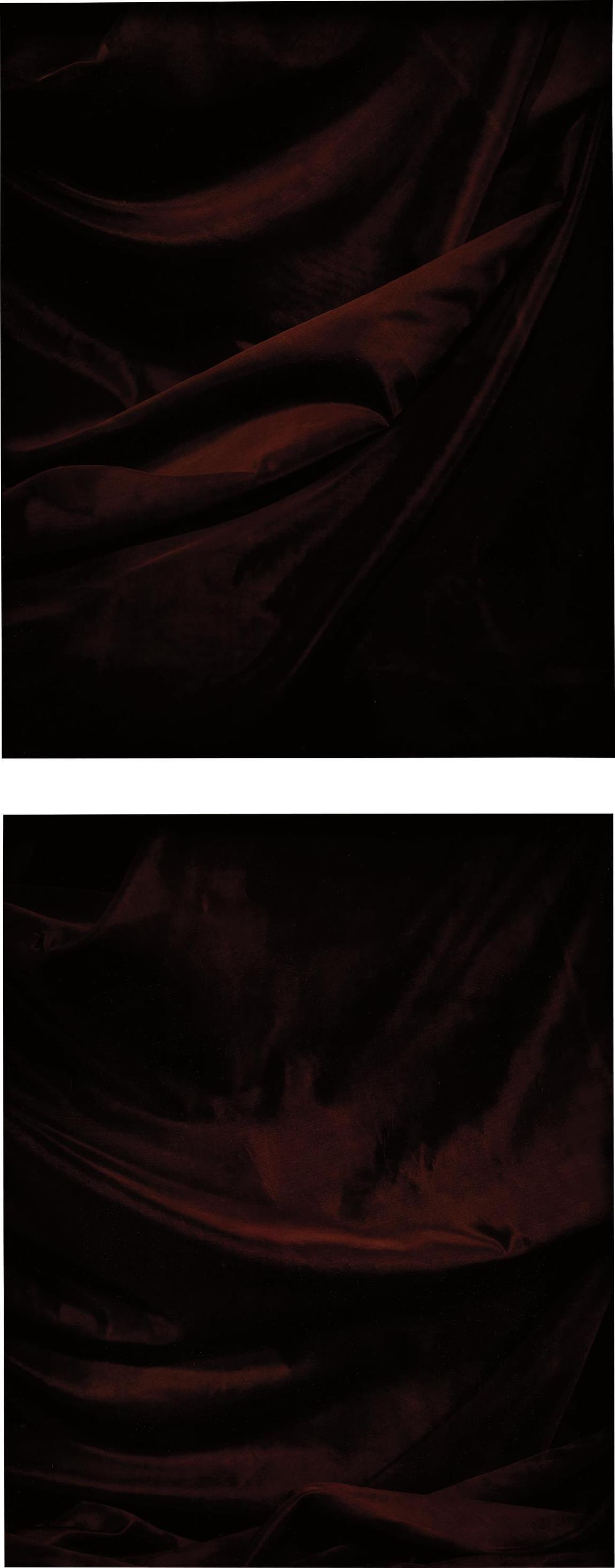 James Welling-Two Works: (I) X; (II) VIII-2008