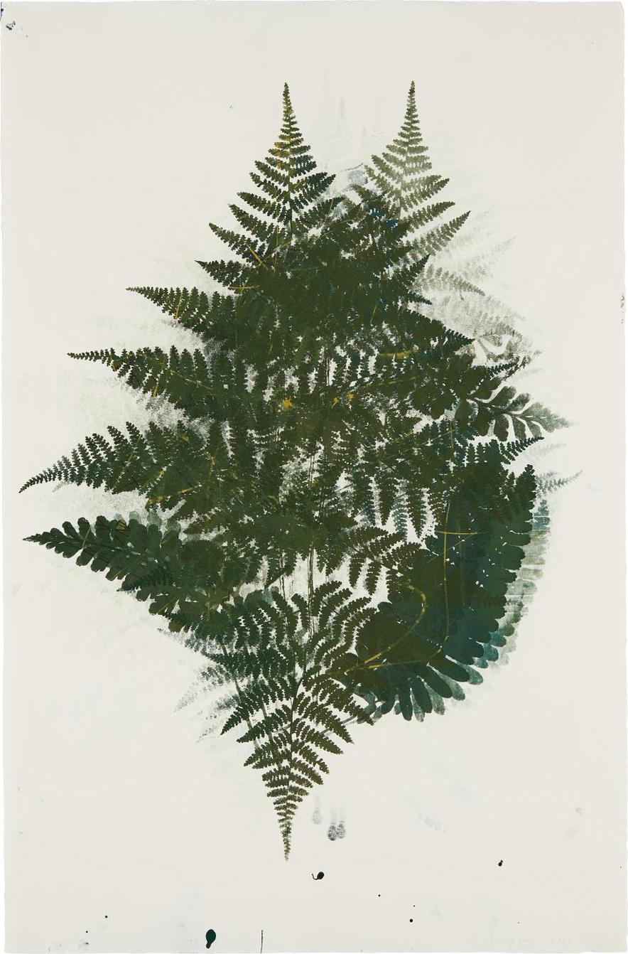 Philip Taaffe-Fern-1998