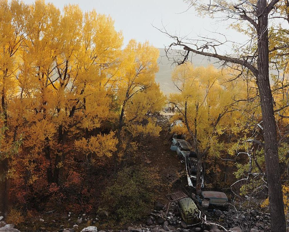 Joel Sternfeld-Near Vail, Colorado, October 1980-1980