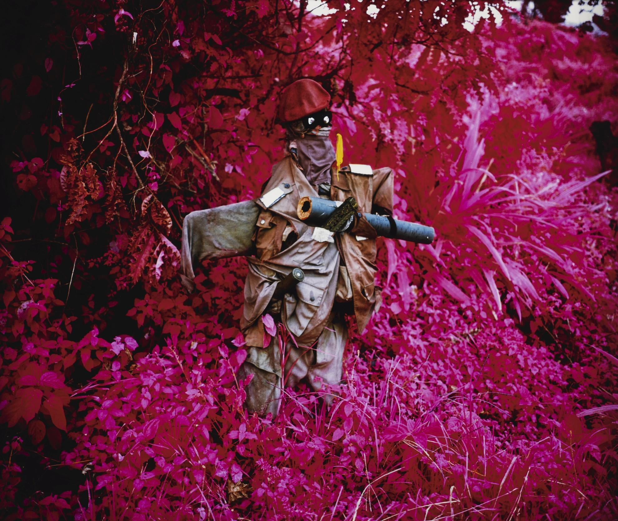 Richard Mosse-Better Than The Real Thing (Infra Series)-2011
