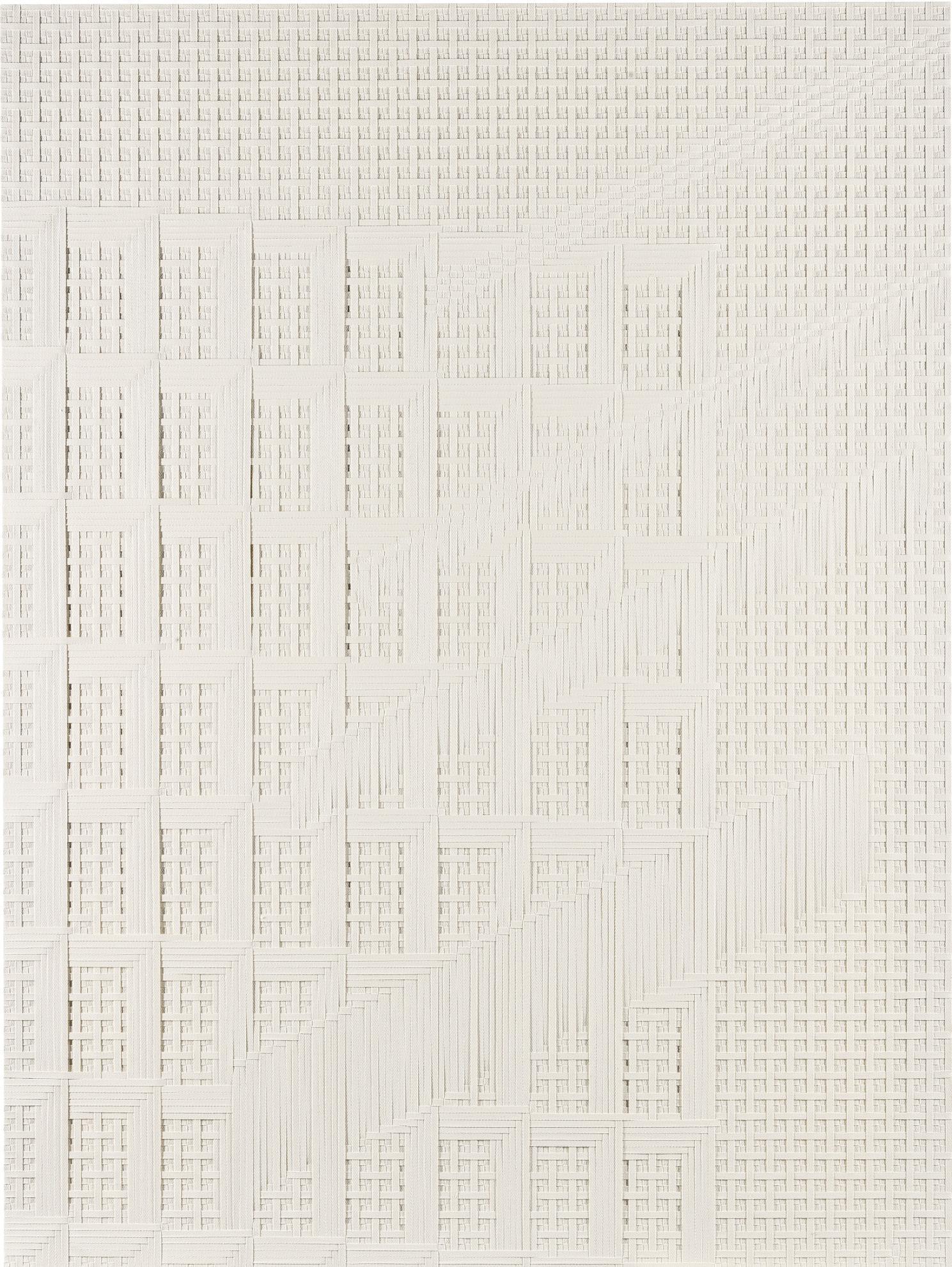 Tauba Auerbach-Facade Split Ray I-2013