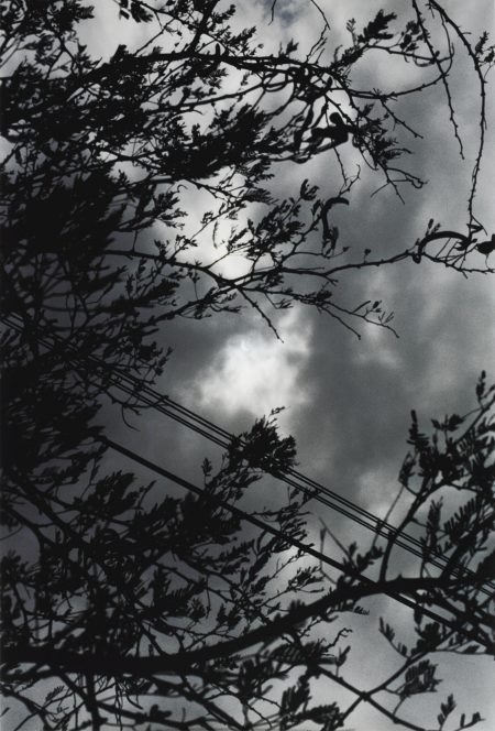 Wolfgang Tillmans-Eclipse 2-3-1998