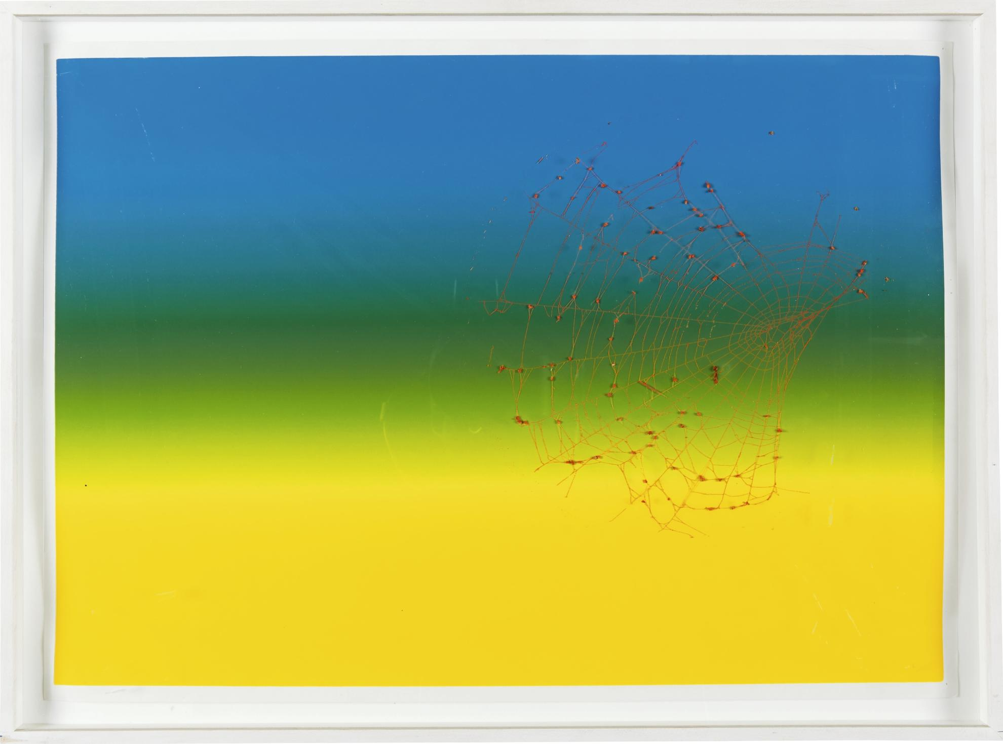 Pae White-Web Sampler 2000 (#6)-2000