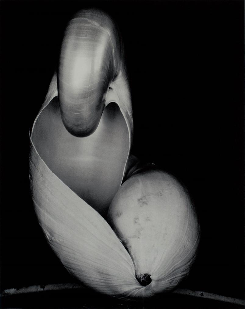 Nautilus-1960