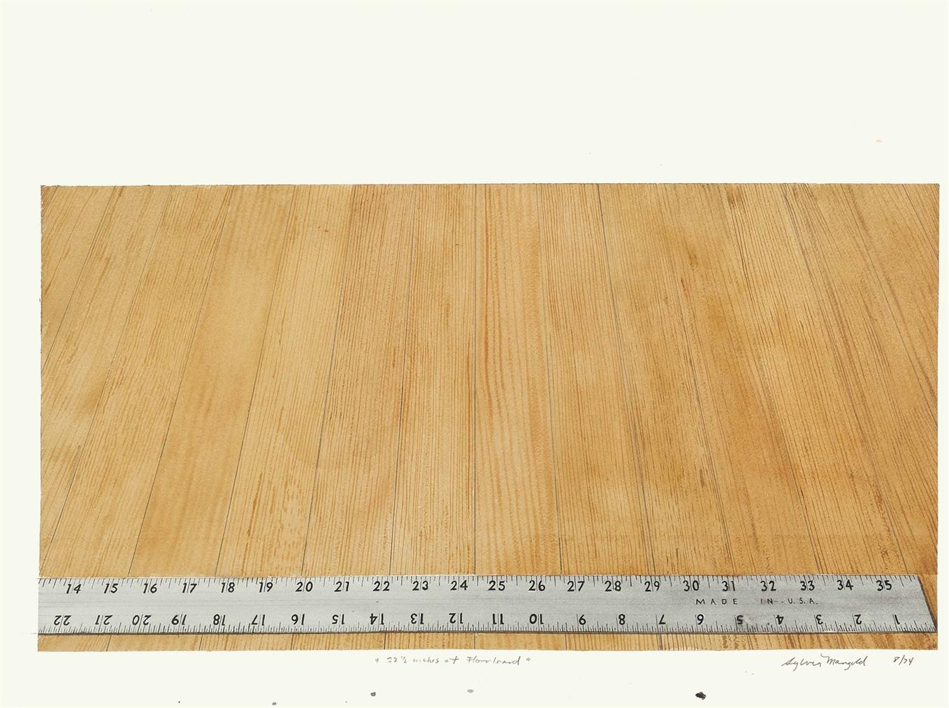 Sylvia Plimack Mangold-22 1/2 Inches Of Floorboard-1974