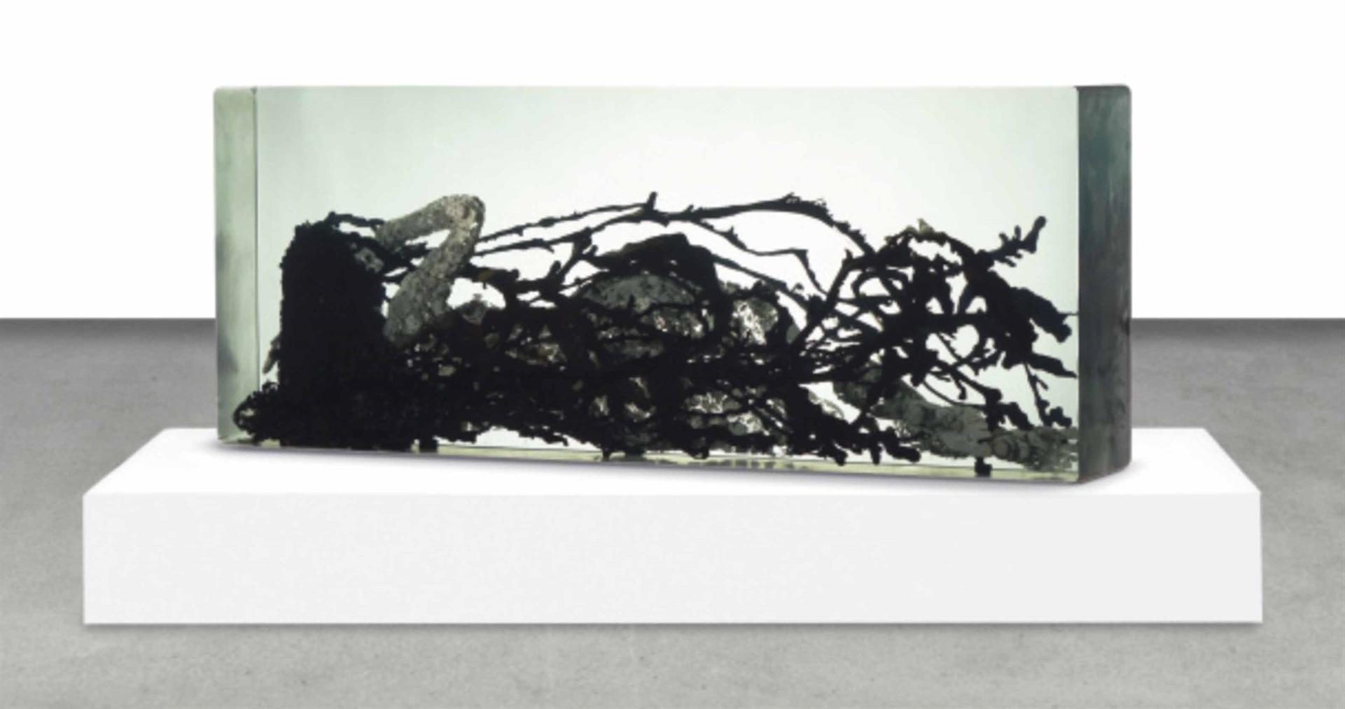 Dustin Yellin-Venus In Fur / Reclining Nude-2011