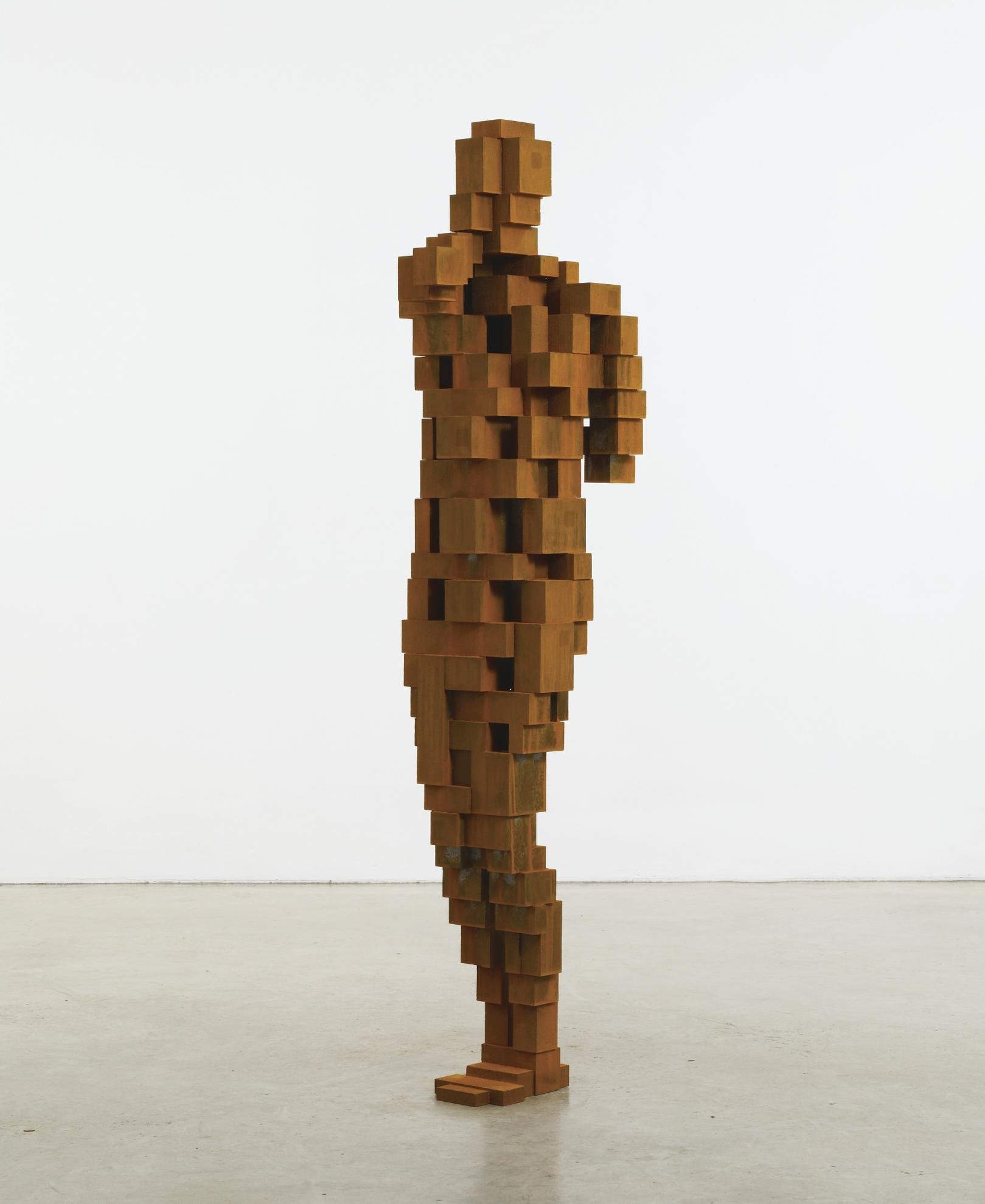 Antony Gormley-Bind II-2011