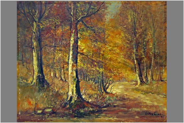 Van Laer G. - Boszicht-