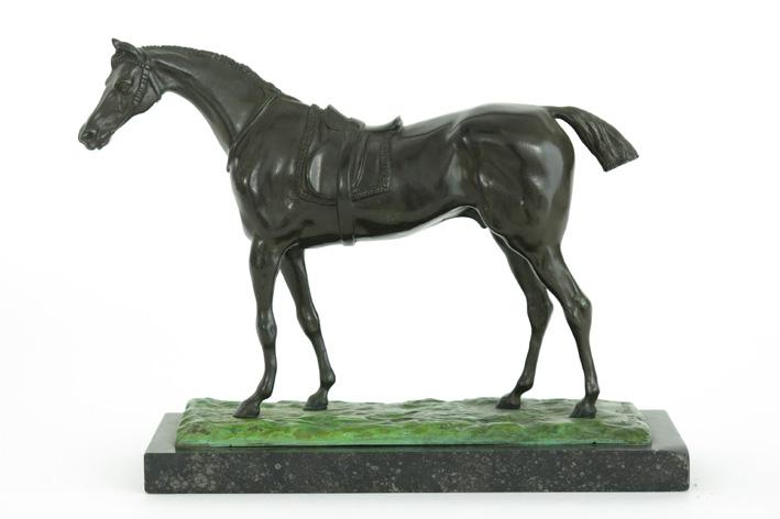 Dupon Josue - Saddled horse-