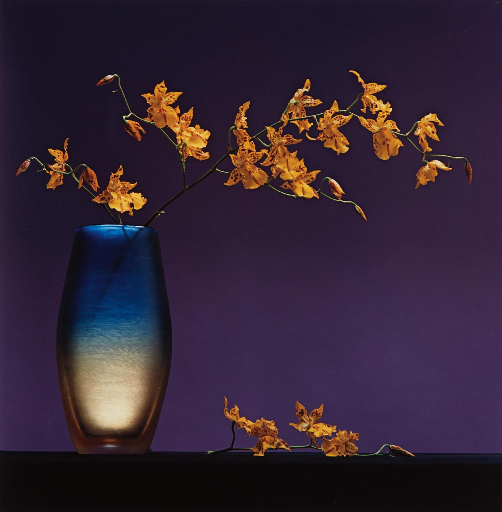 Robert Mapplethorpe-Flowers In Vase-1985