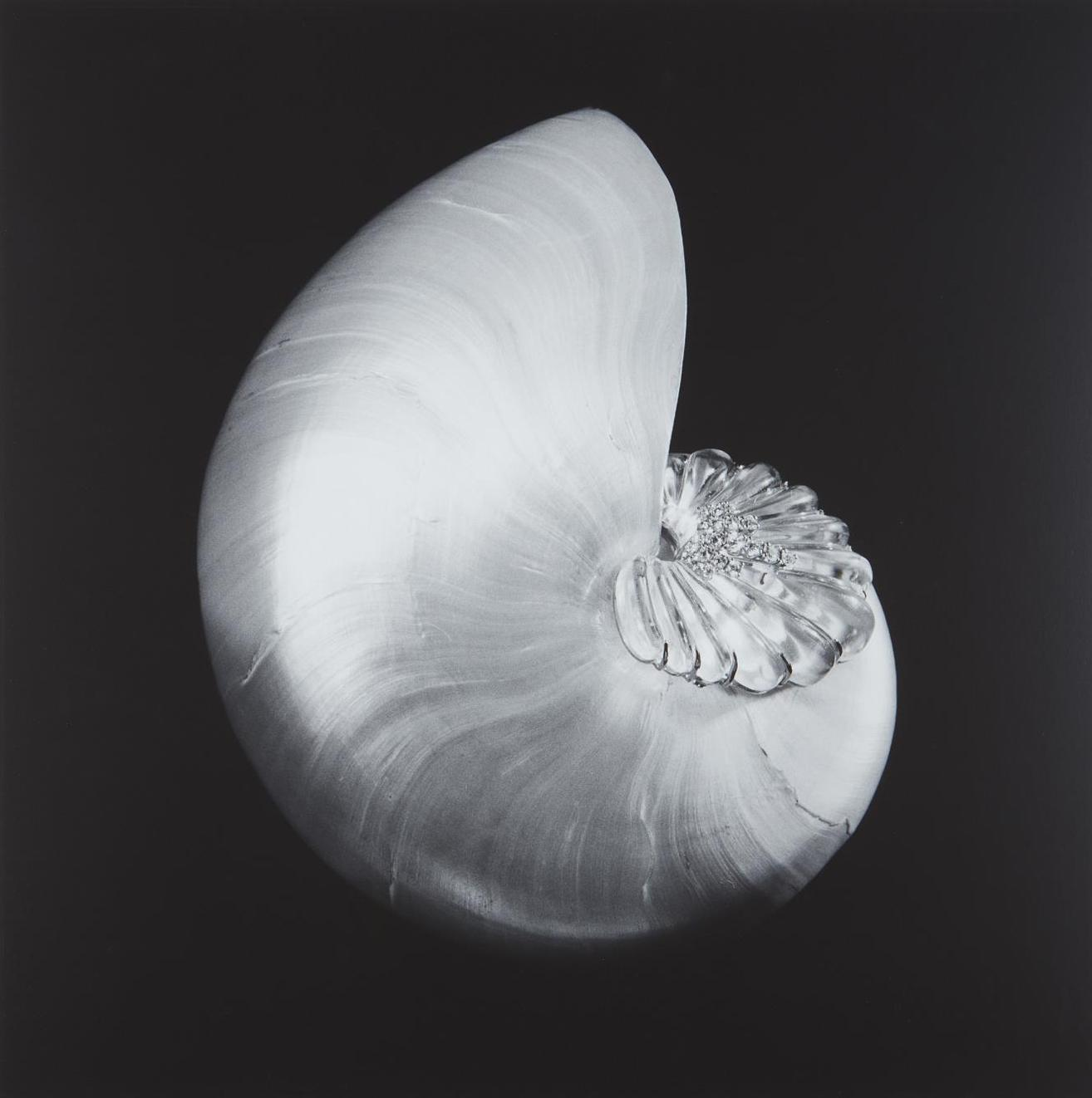 Robert Mapplethorpe-Shell And Crystal-1986