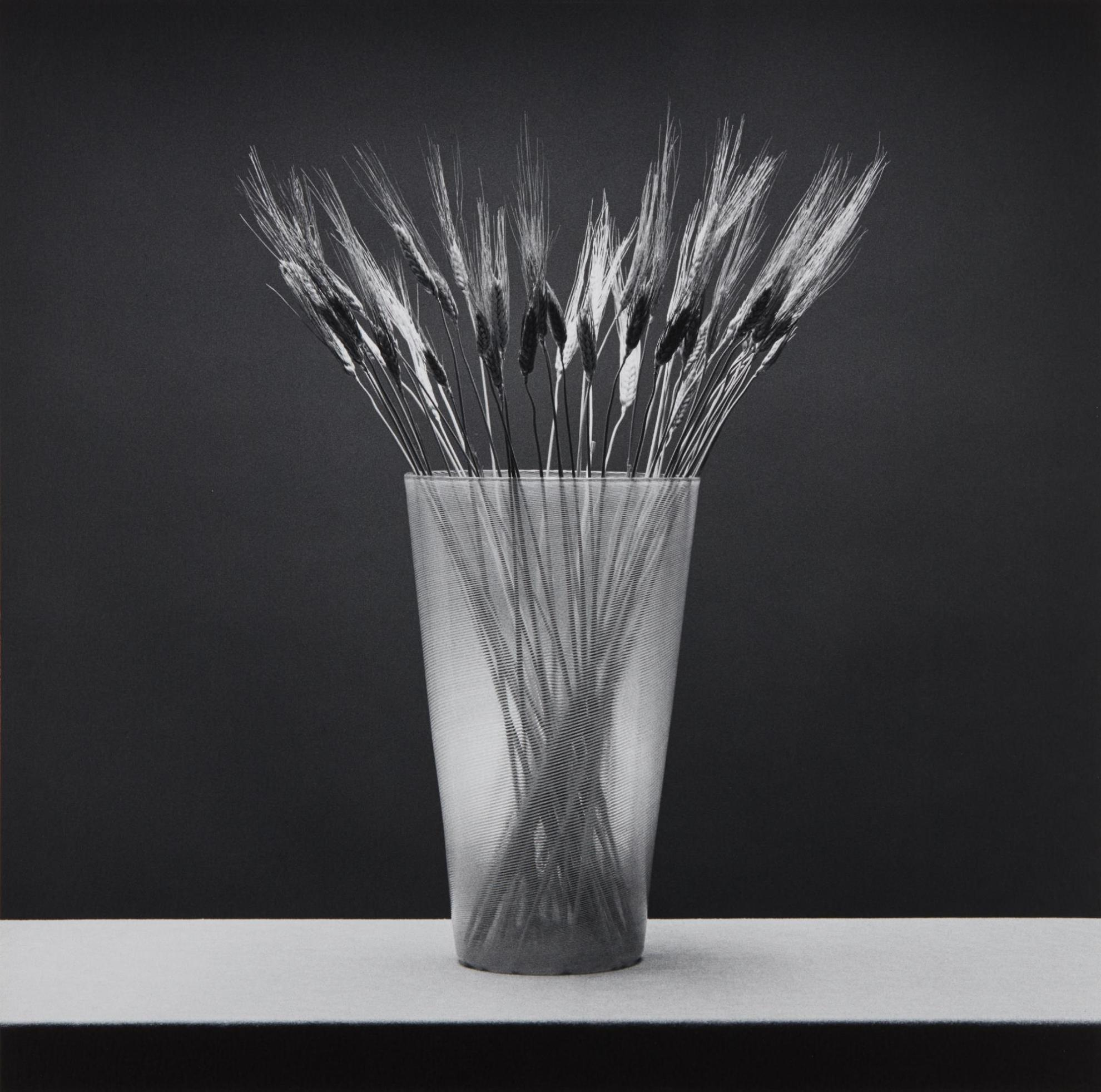 Robert Mapplethorpe-Wheat-1985