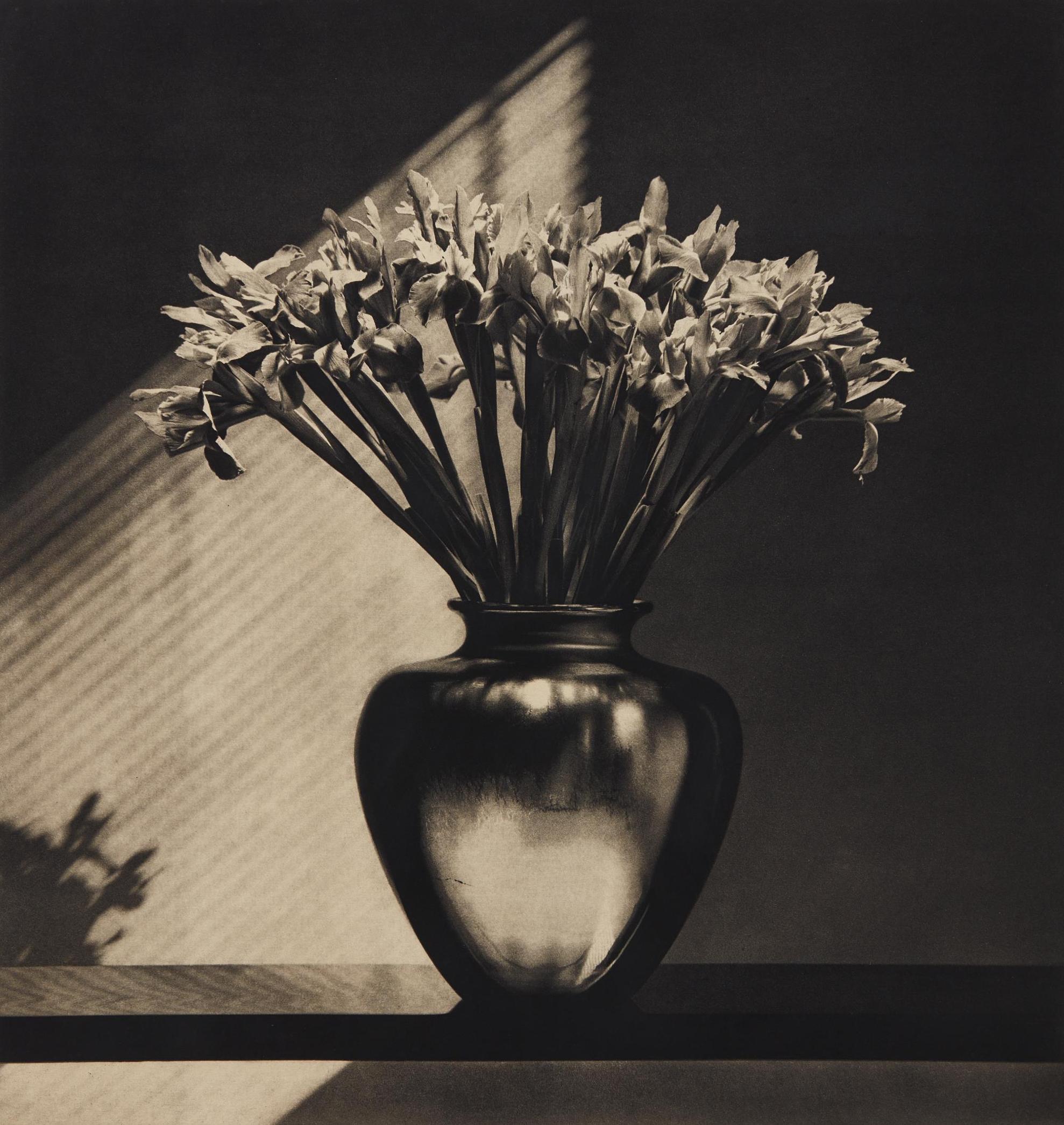 Robert Mapplethorpe-Irises-1986