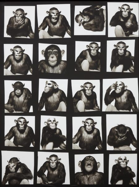Albert Watson-Monkey With Masks, New York City-1994
