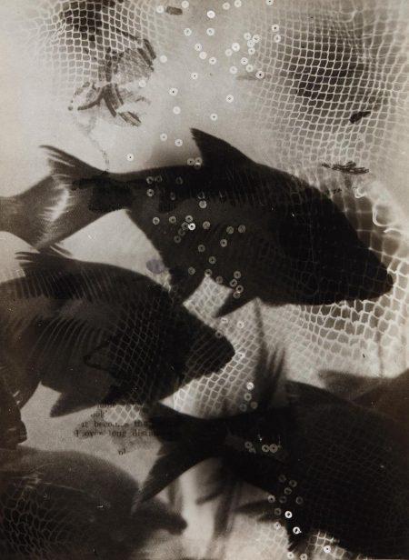 Heinz Hajek-Halke-Traumende Fische (Dreaming Fish)-1950