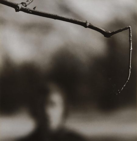 Ralph Eugene Meatyard-Untitled (Face And Branch)-1962