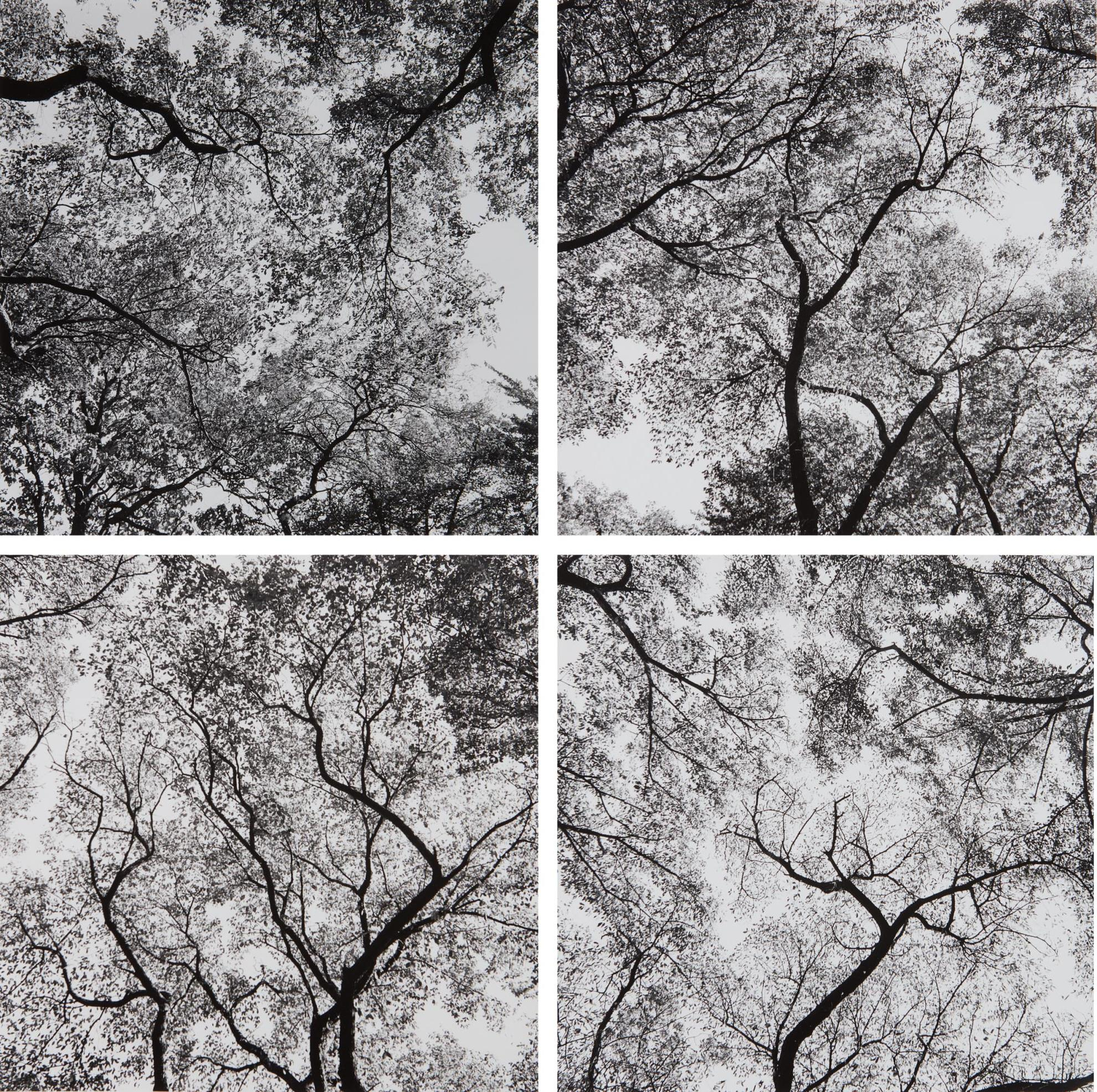 Harry Callahan-Ansley Park, Atlanta-1992