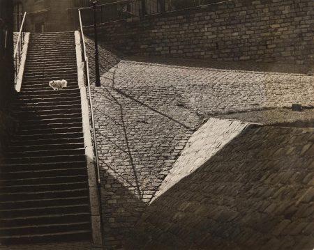 Brassai-Les Escaliers A Montmartre-1932