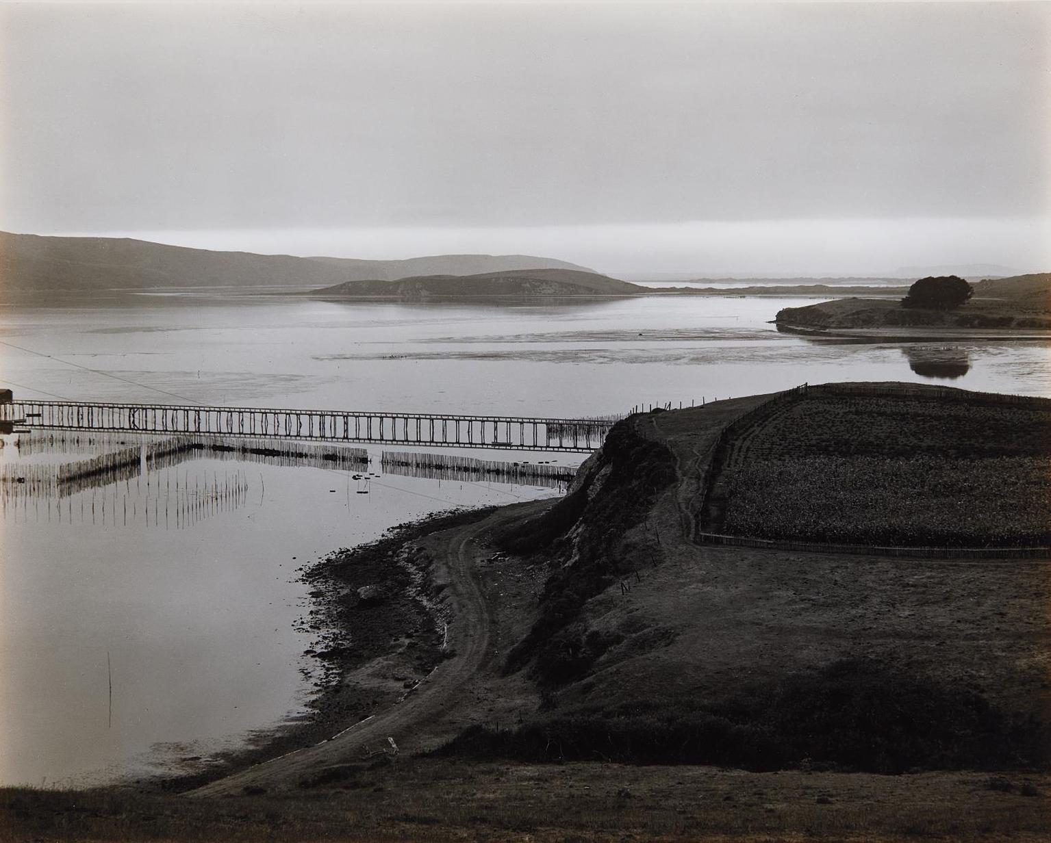Edward Weston-The Harbor, Tamales Bay-1937