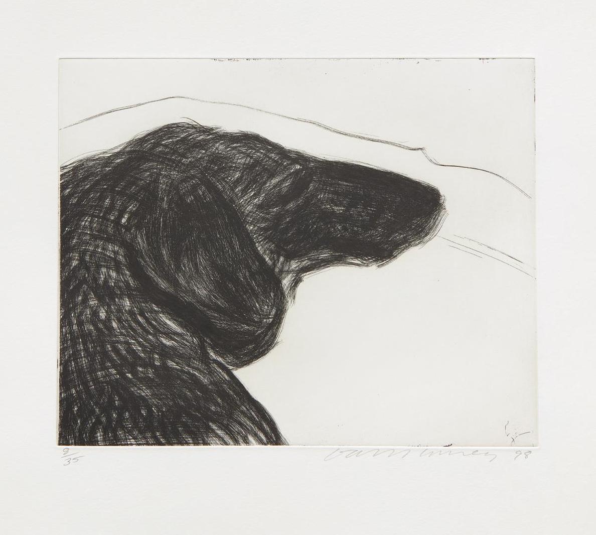 David Hockney-Dog Etching No. 6, From Dog Wall-1994