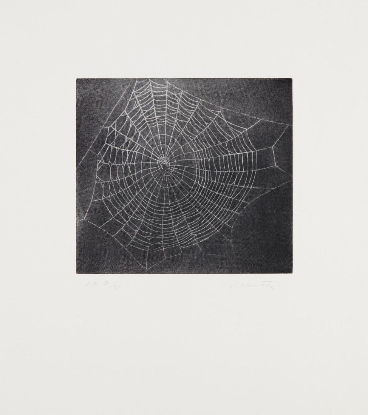 Vija Celmins-Untitled (Web 1), From Moca Portfolio-2001